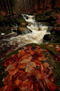 Jedlovské údolí na konci podzimu